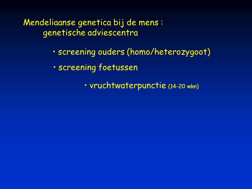 Mendeliaanse genetica bij de mens : genetische adviescentra screening ouders (homo/heterozygoot) screening foetussen vruchtwaterpunctie (14-20 wkn)