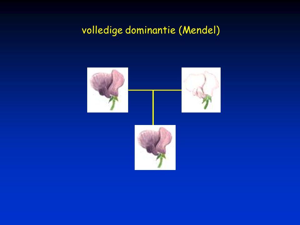 volledige dominantie (Mendel)