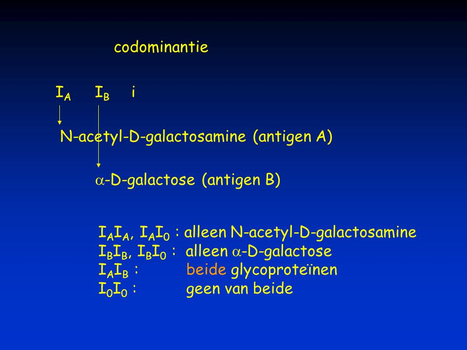 codominantie I A I B i N-acetyl-D-galactosamine (antigen A)  -D-galactose (antigen B) I A I A, I A I 0 : alleen N-acetyl-D-galactosamine I B I B, I B