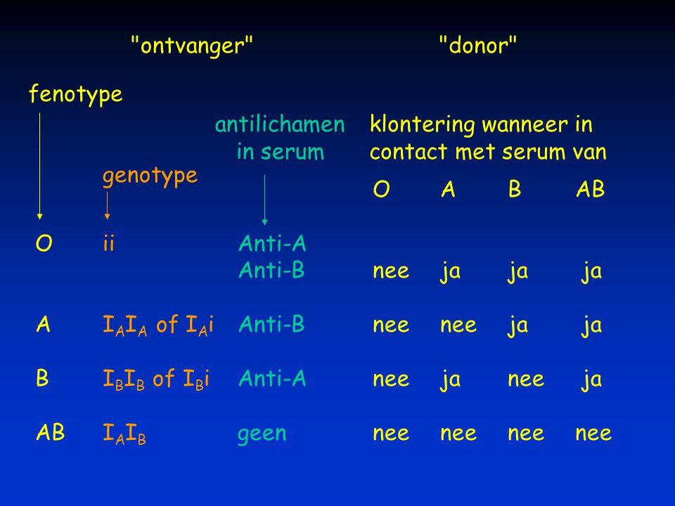 OABAB OiiAnti-A Anti-Bneejaja ja AI A I A of I A iAnti-Bneeneeja ja BI B I B of I B iAnti-Aneejanee ja ABI A I B geenneeneeneenee fenotype genotype kl