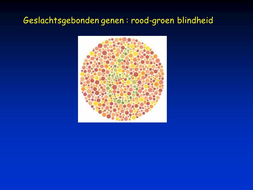 Geslachtsgebonden genen : rood-groen blindheid