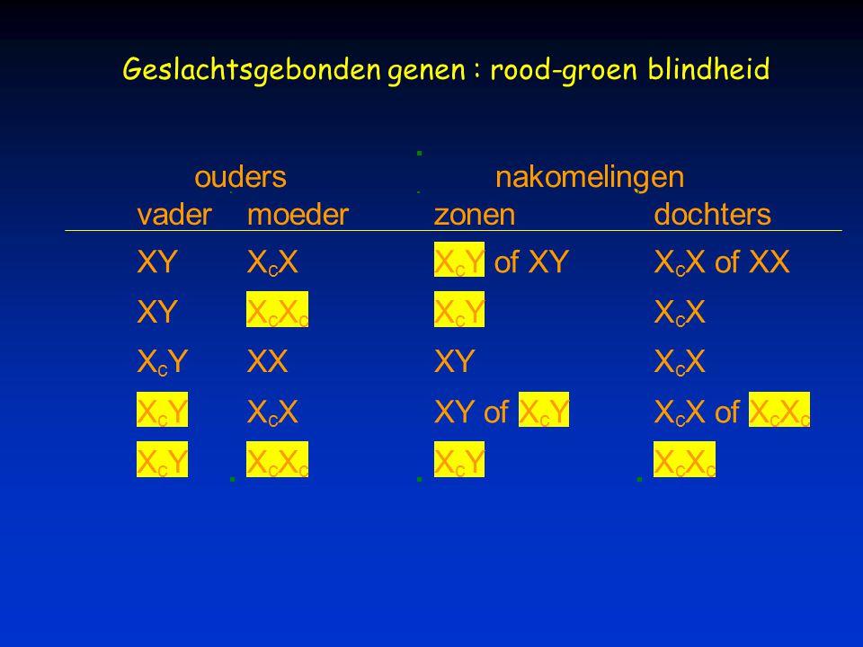oudersnakomelingen vadermoederzonendochters XYX c XX c Y of XYX c X of XX XYX c X c X c YX c X X c YXXXYX c X X c YX c XXY ofX c YX c X ofX c X c X c