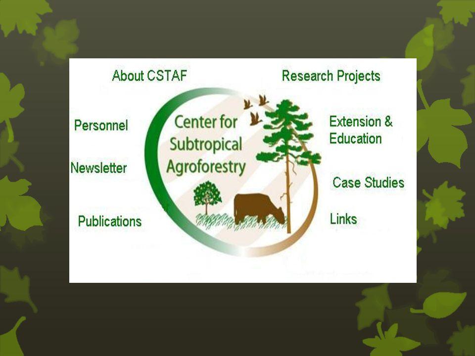Wat is agroforestry .