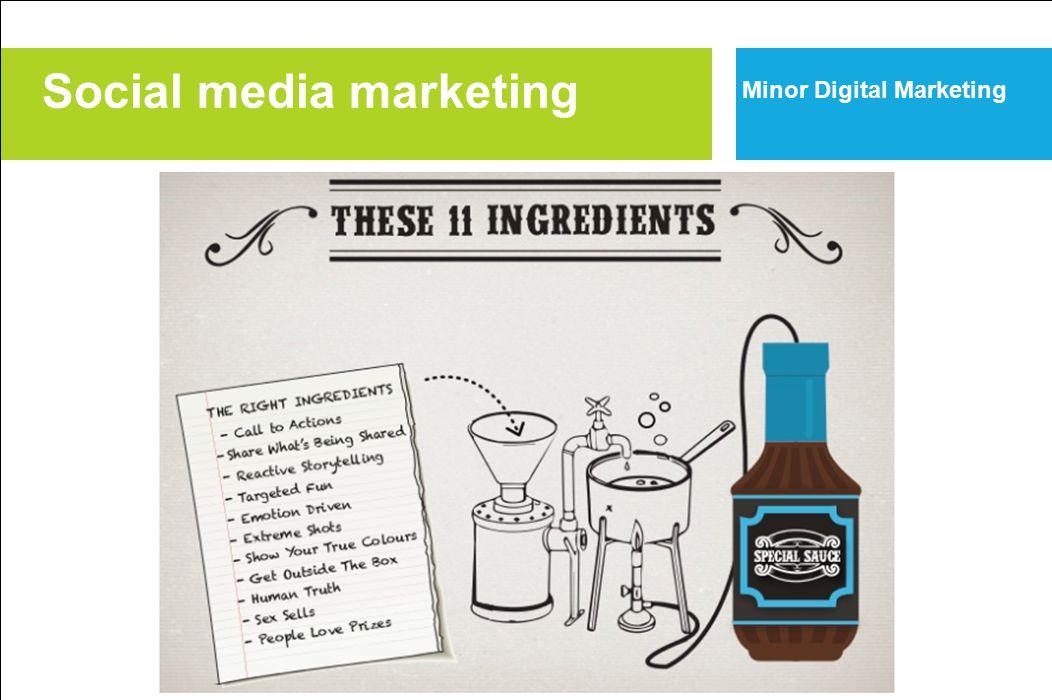 Social media marketing Minor Digital Marketing