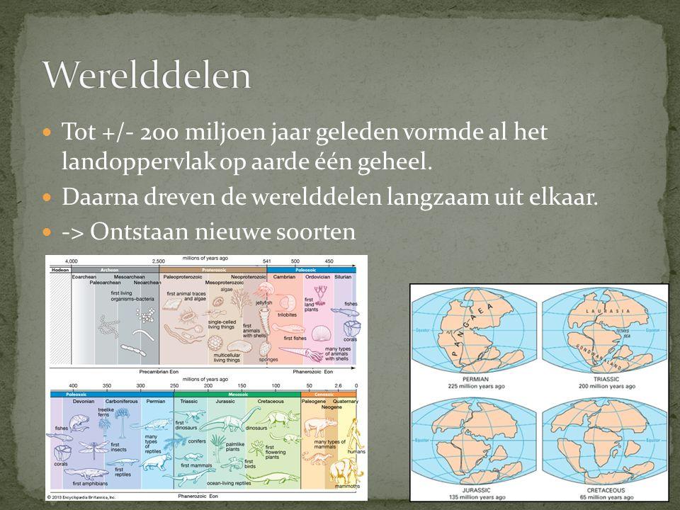 Tot +/- 200 miljoen jaar geleden vormde al het landoppervlak op aarde één geheel.