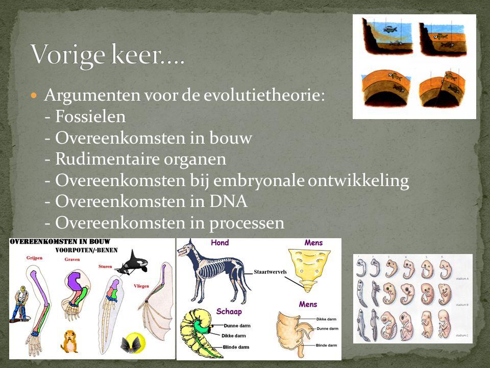 Argumenten voor de evolutietheorie: - Fossielen - Overeenkomsten in bouw - Rudimentaire organen - Overeenkomsten bij embryonale ontwikkeling - Overeenkomsten in DNA - Overeenkomsten in processen