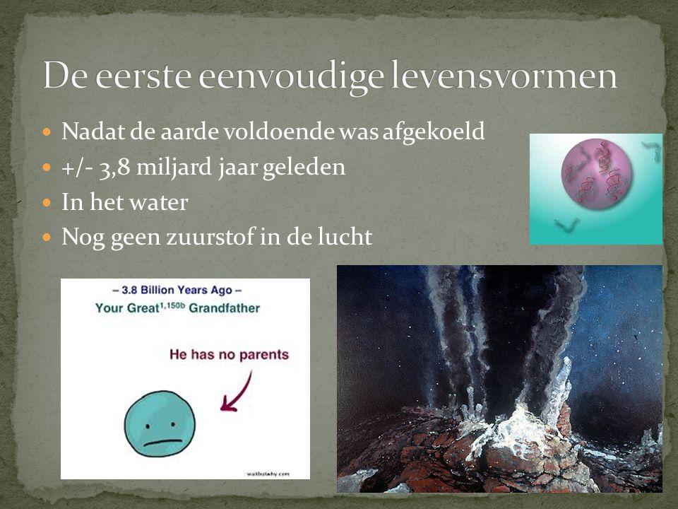 Nadat de aarde voldoende was afgekoeld +/- 3,8 miljard jaar geleden In het water Nog geen zuurstof in de lucht