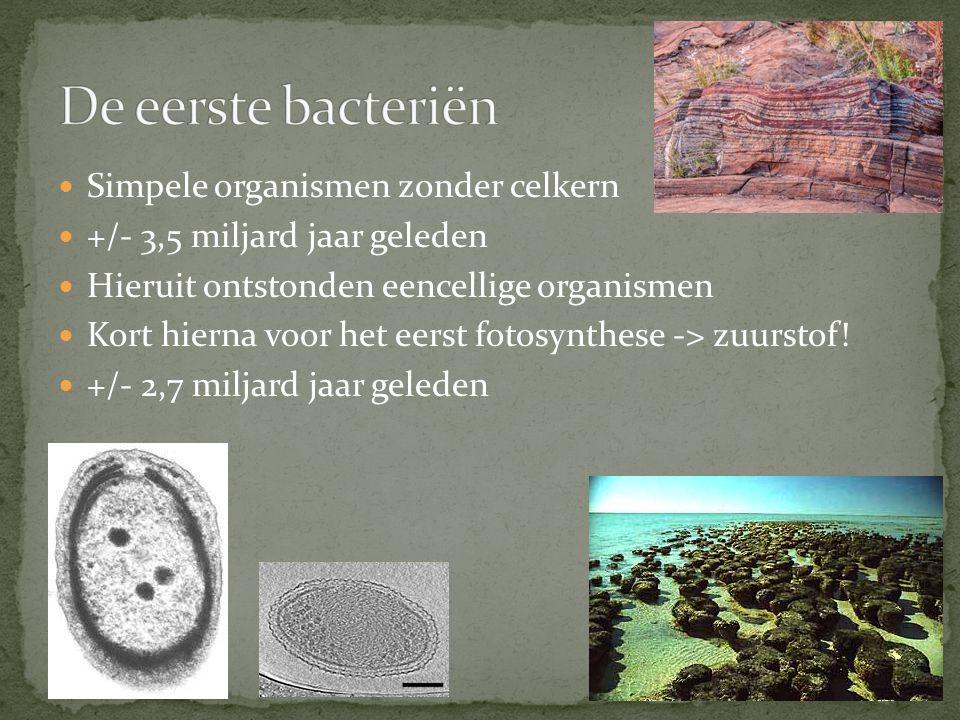 Simpele organismen zonder celkern +/- 3,5 miljard jaar geleden Hieruit ontstonden eencellige organismen Kort hierna voor het eerst fotosynthese -> zuu