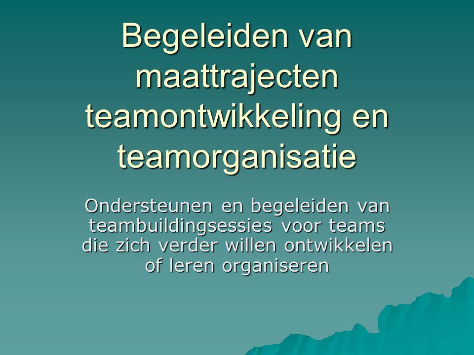 Begeleiden van maattrajecten teamontwikkeling en teamorganisatie Ondersteunen en begeleiden van teambuildingsessies voor teams die zich verder willen ontwikkelen of leren organiseren