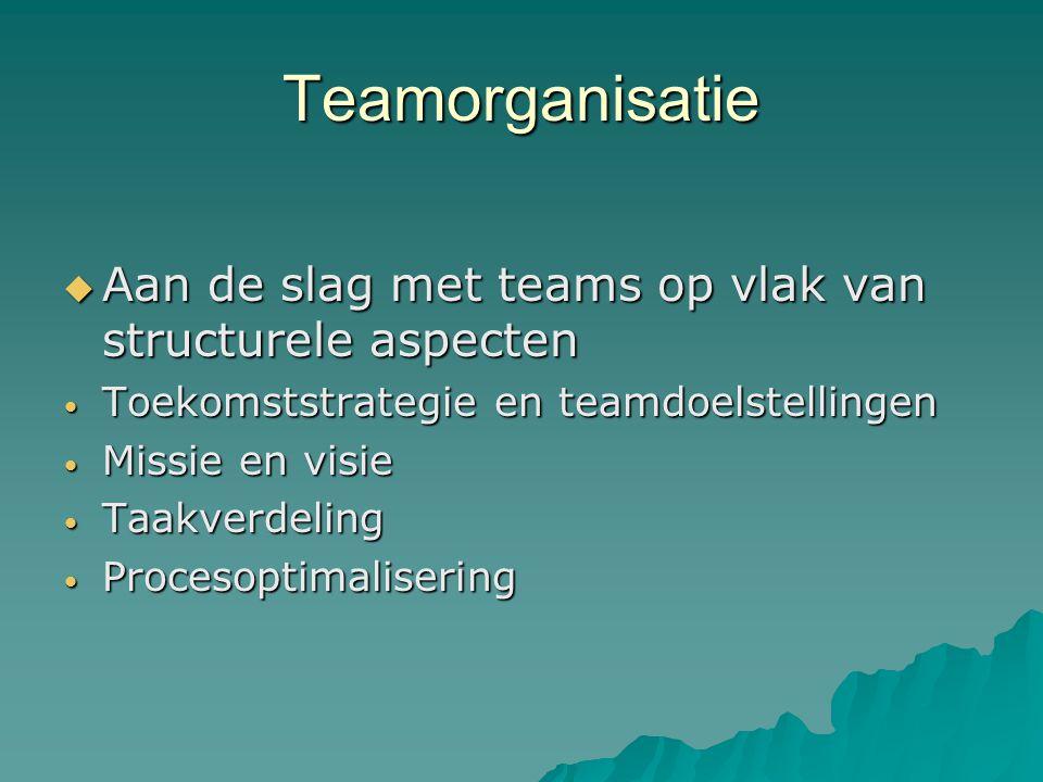 Teamorganisatie  Aan de slag met teams op vlak van structurele aspecten Toekomststrategie en teamdoelstellingen Toekomststrategie en teamdoelstellingen Missie en visie Missie en visie Taakverdeling Taakverdeling Procesoptimalisering Procesoptimalisering