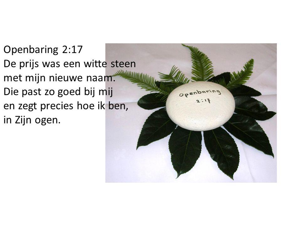 Openbaring 2:17 De prijs was een witte steen met mijn nieuwe naam.