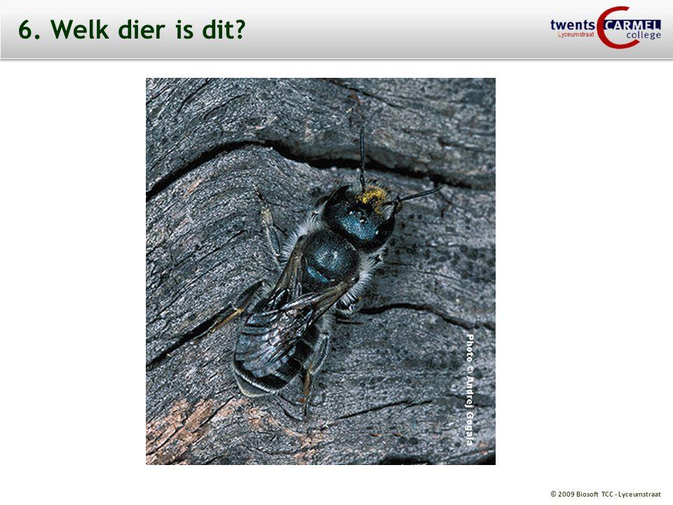 © 2009 Biosoft TCC - Lyceumstraat 6. Welk dier is dit?