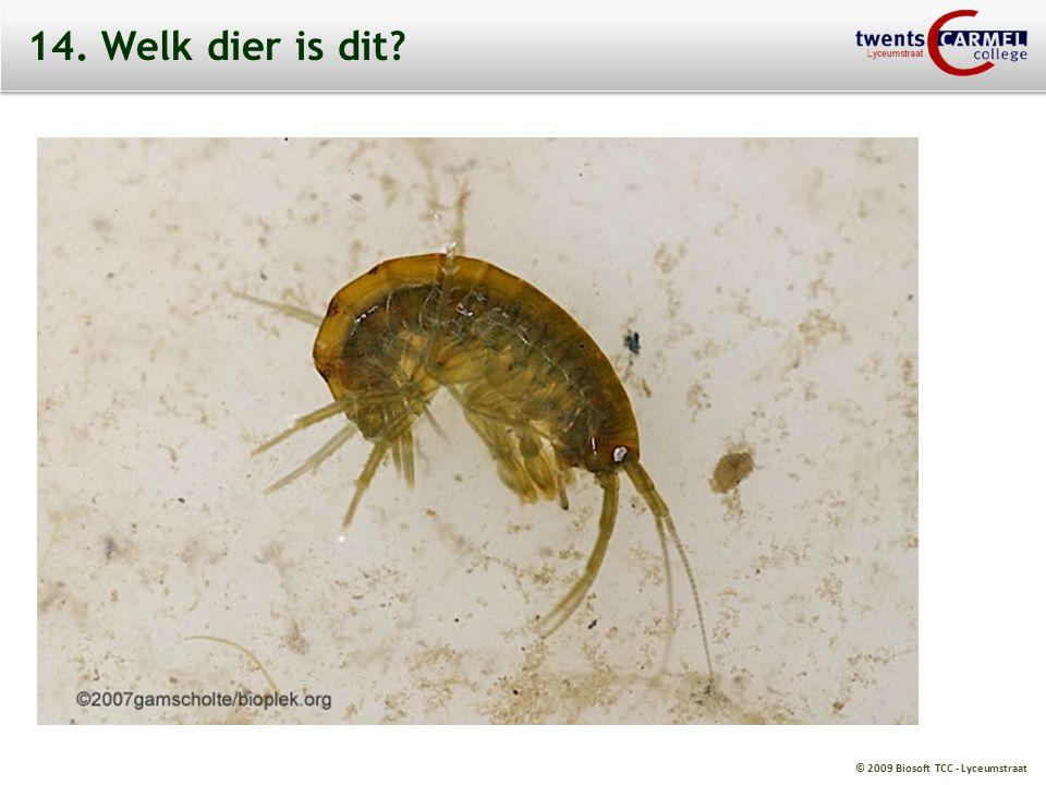© 2009 Biosoft TCC - Lyceumstraat 14. Welk dier is dit?