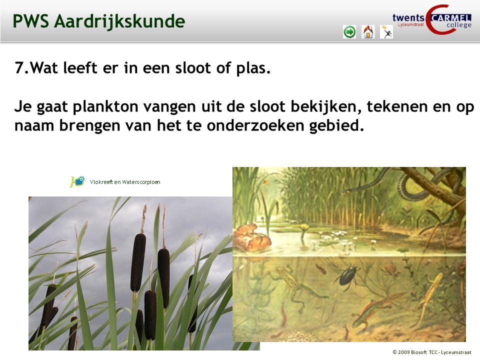 © 2009 Biosoft TCC - Lyceumstraat PWS Aardrijkskunde 7.Wat leeft er in een sloot of plas.