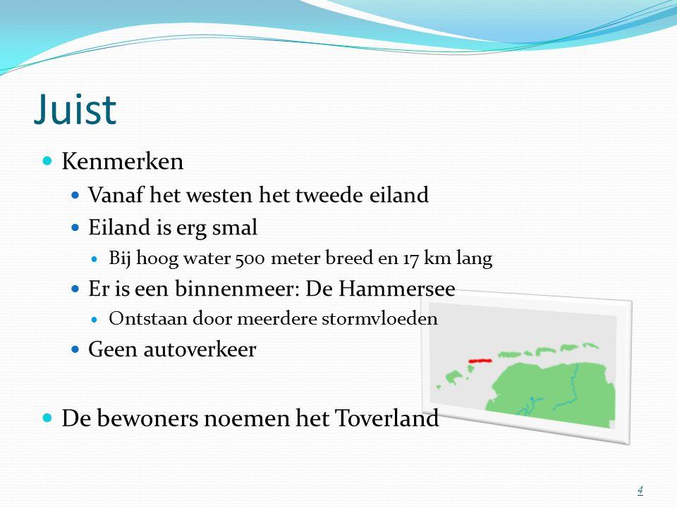 Juist Kenmerken Vanaf het westen het tweede eiland Eiland is erg smal Bij hoog water 500 meter breed en 17 km lang Er is een binnenmeer: De Hammersee Ontstaan door meerdere stormvloeden Geen autoverkeer De bewoners noemen het Toverland 4