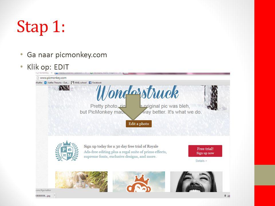 Stap 1: Ga naar picmonkey.com Klik op: EDIT