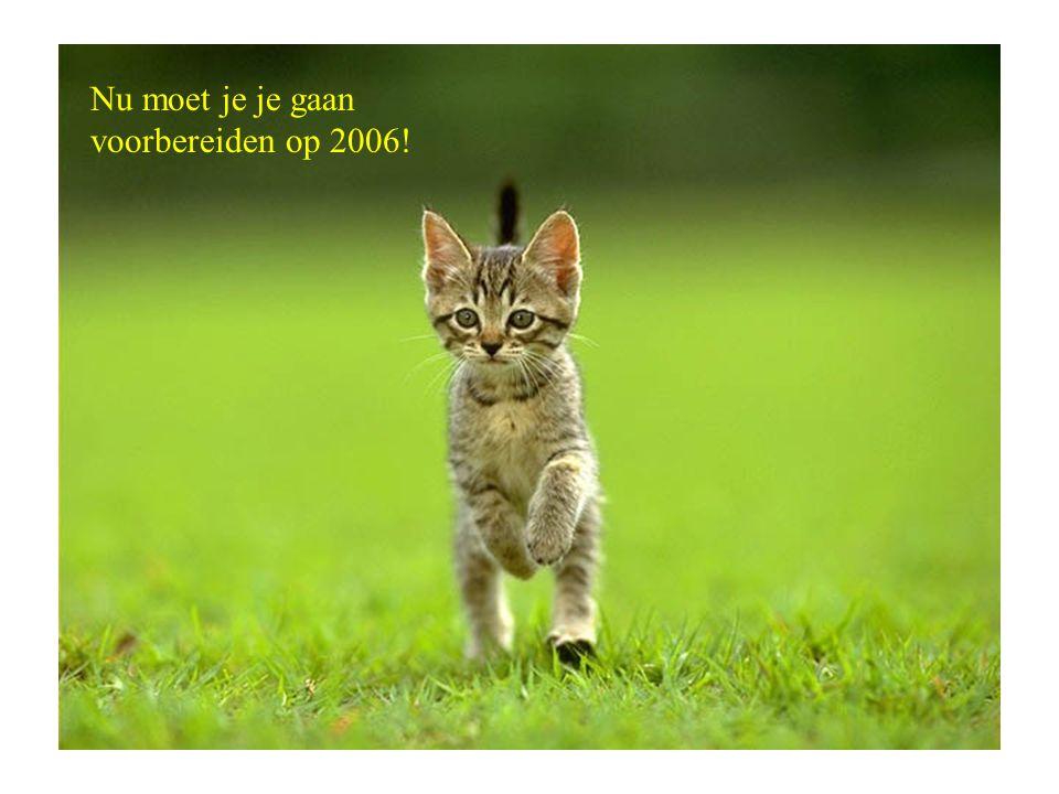 Nu moet je je gaan voorbereiden op 2006!