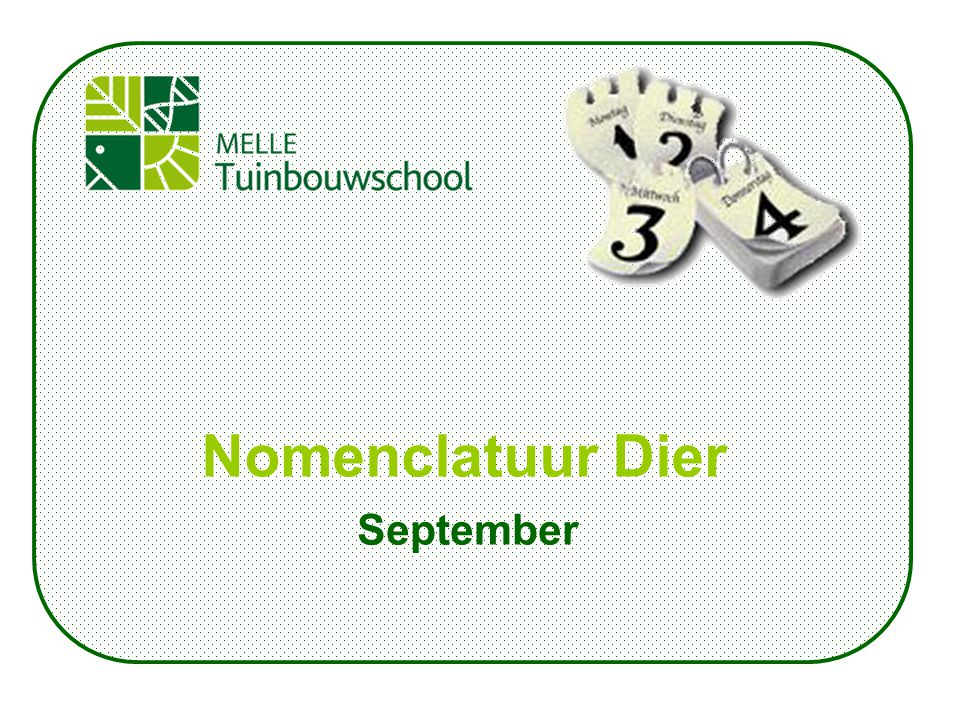 September Nomenclatuur Dier