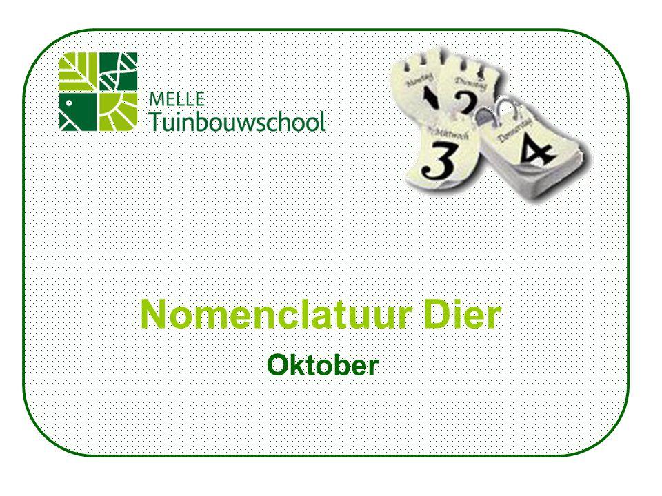 Oktober Nomenclatuur Dier