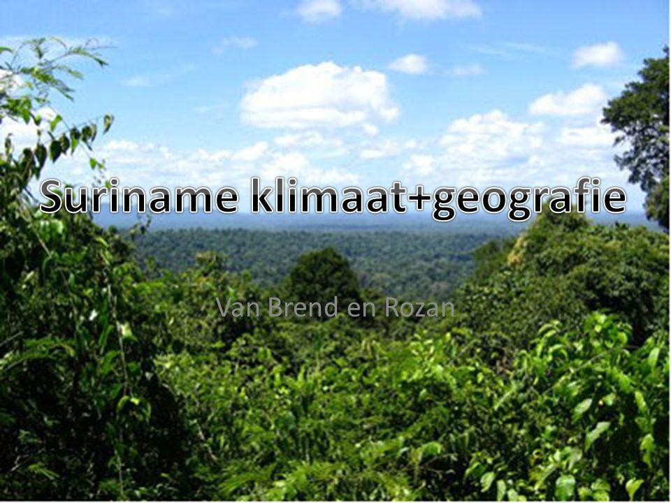 1. Inleiding 2. Tropisch regenwoud 3. Seizoenen 4.geografie