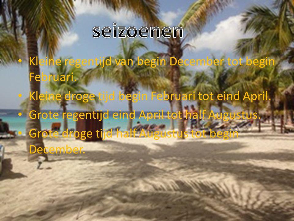 Suriname ligt in het noorden van Zuid- Amerika.