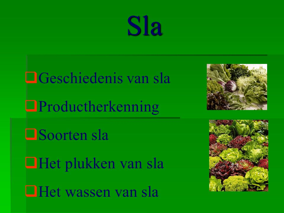 Sla  Geschiedenis van sla  Productherkenning  Soorten sla  Het plukken van sla  Het wassen van sla