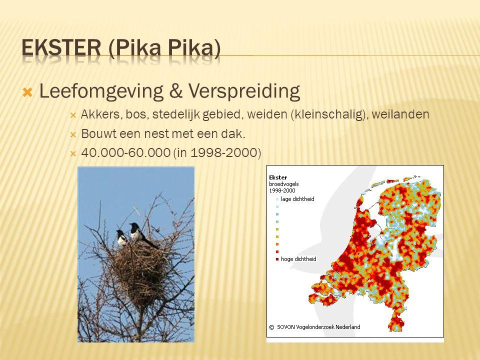  Leefomgeving & Verspreiding  Akkers, bos, stedelijk gebied, weiden (kleinschalig), weilanden  Bouwt een nest met een dak.