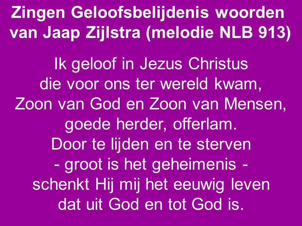 Zingen Geloofsbelijdenis woorden van Jaap Zijlstra (melodie NLB 913) Ik geloof in Jezus Christus die voor ons ter wereld kwam, Zoon van God en Zoon van Mensen, goede herder, offerlam.