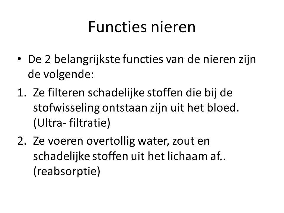 Functies nieren De 2 belangrijkste functies van de nieren zijn de volgende: 1.Ze filteren schadelijke stoffen die bij de stofwisseling ontstaan zijn u