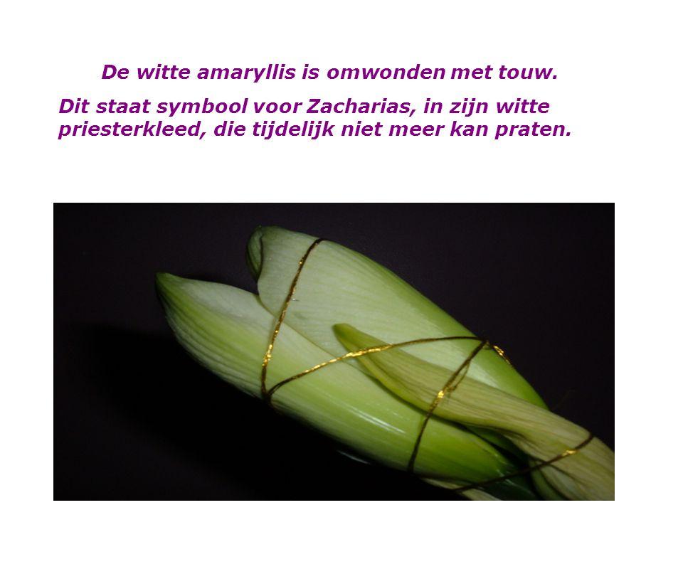 De eerste zondag van advent2009 Het bloemstuk is gemaakt n.a.v. Lucas 1:1-25