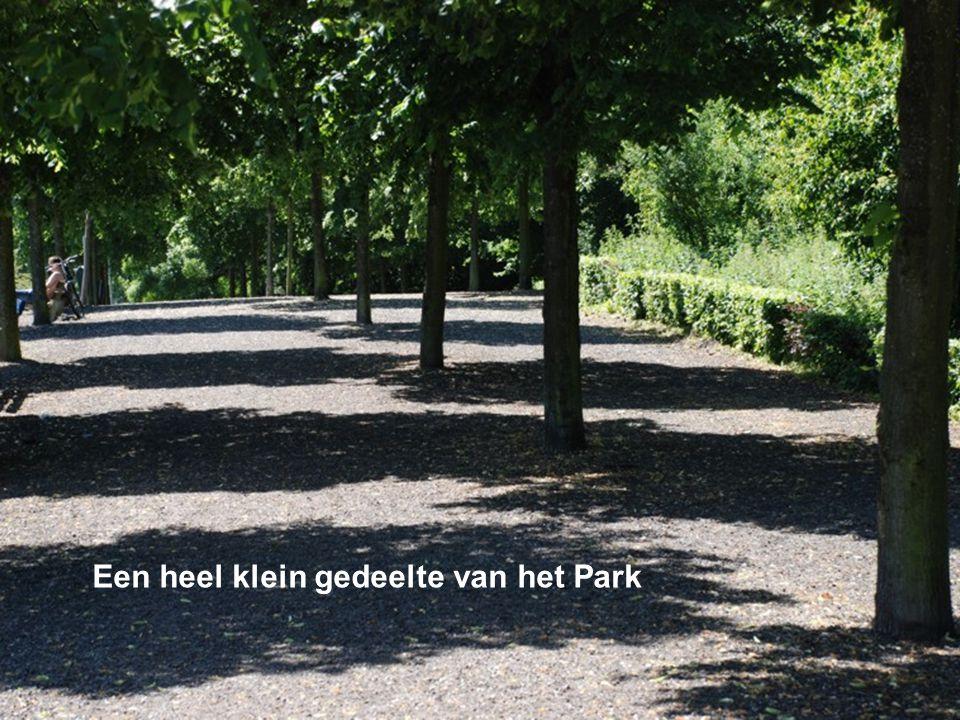 Parktrap
