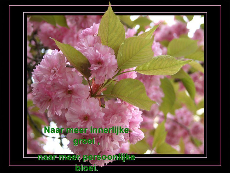 ' T is lente buiten, maak het lente vanbinnen vrolijk uitgerust opnieuw beginnen.