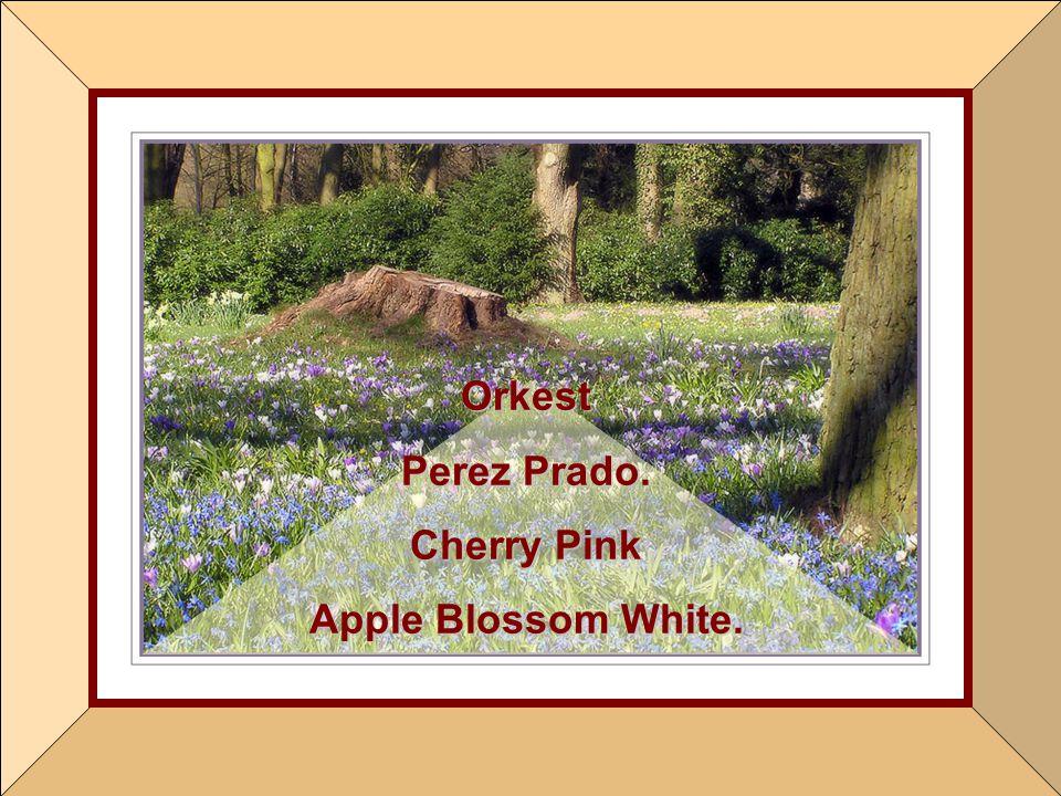 Orkest Perez Prado. Cherry Pink Apple Blossom White.