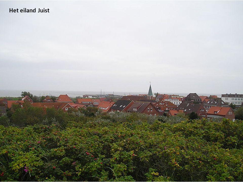 Kerkhof op Nordstrand