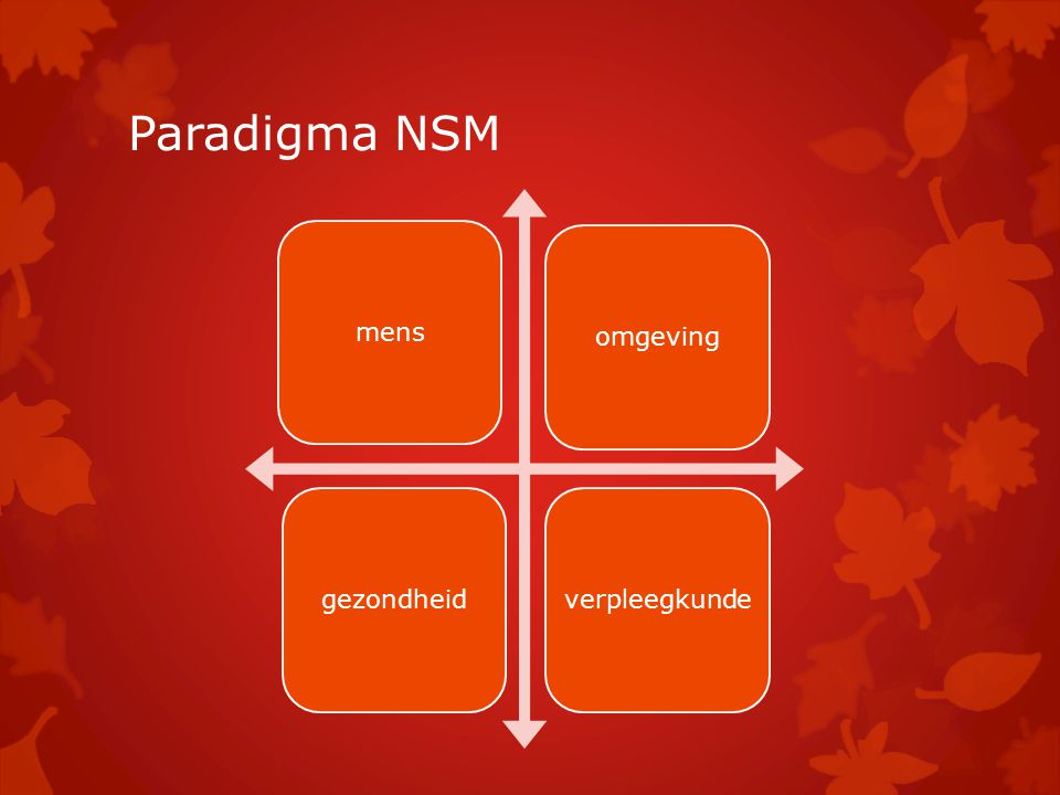 Paradigma NSM mensomgevinggezondheidverpleegkunde