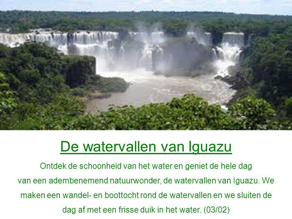 De watervallen van Iguazu Ontdek de schoonheid van het water en geniet de hele dag van een adembenemend natuurwonder, de watervallen van Iguazu.