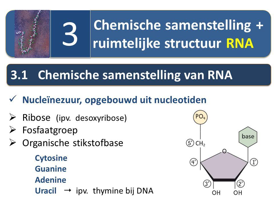 Chemische samenstelling + ruimtelijke structuur RNA 3 3 3.1Chemische samenstelling van RNA Nucleïnezuur, opgebouwd uit nucleotiden  Ribose (ipv. deso