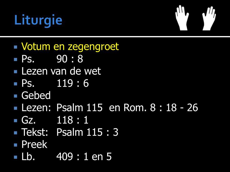  Votum en zegengroet  Ps.90 : 8  Lezen van de wet  Ps.119 : 6  Gebed  Lezen:Psalm 115 en Rom. 8 : 18 - 26  Gz.118 : 1  Tekst:Psalm 115 : 3  P