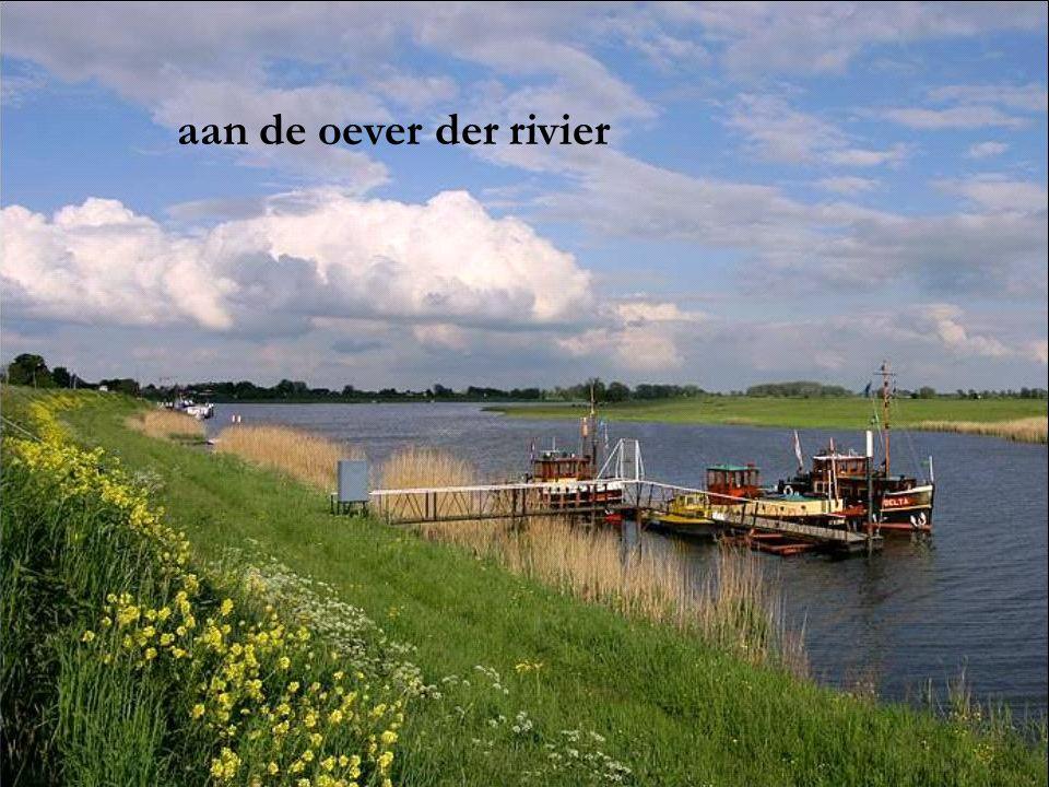 aan de oever der rivier
