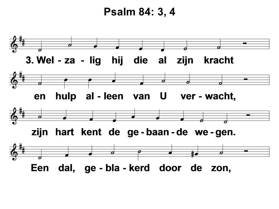 Psalm 84: 3, 4