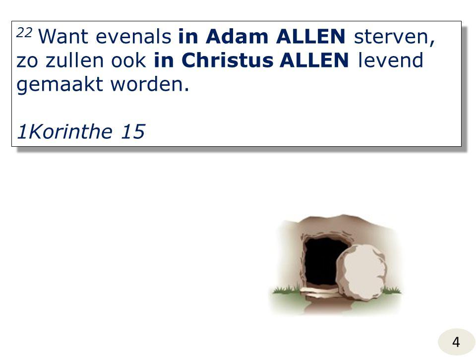 22 Want evenals in Adam ALLEN sterven, zo zullen ook in Christus ALLEN levend gemaakt worden. 1Korinthe 15 22 Want evenals in Adam ALLEN sterven, zo z