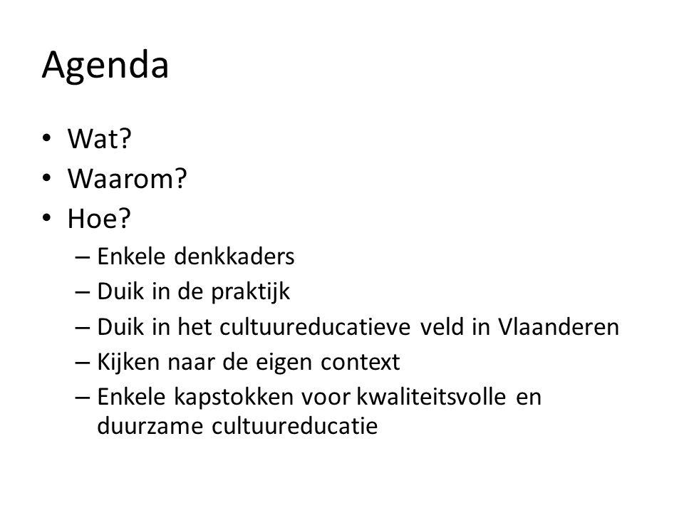 Agenda Wat? Waarom? Hoe? – Enkele denkkaders – Duik in de praktijk – Duik in het cultuureducatieve veld in Vlaanderen – Kijken naar de eigen context –