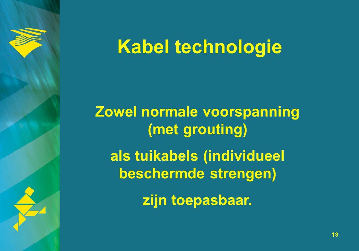 13 Kabel technologie Zowel normale voorspanning (met grouting) als tuikabels (individueel beschermde strengen) zijn toepasbaar.