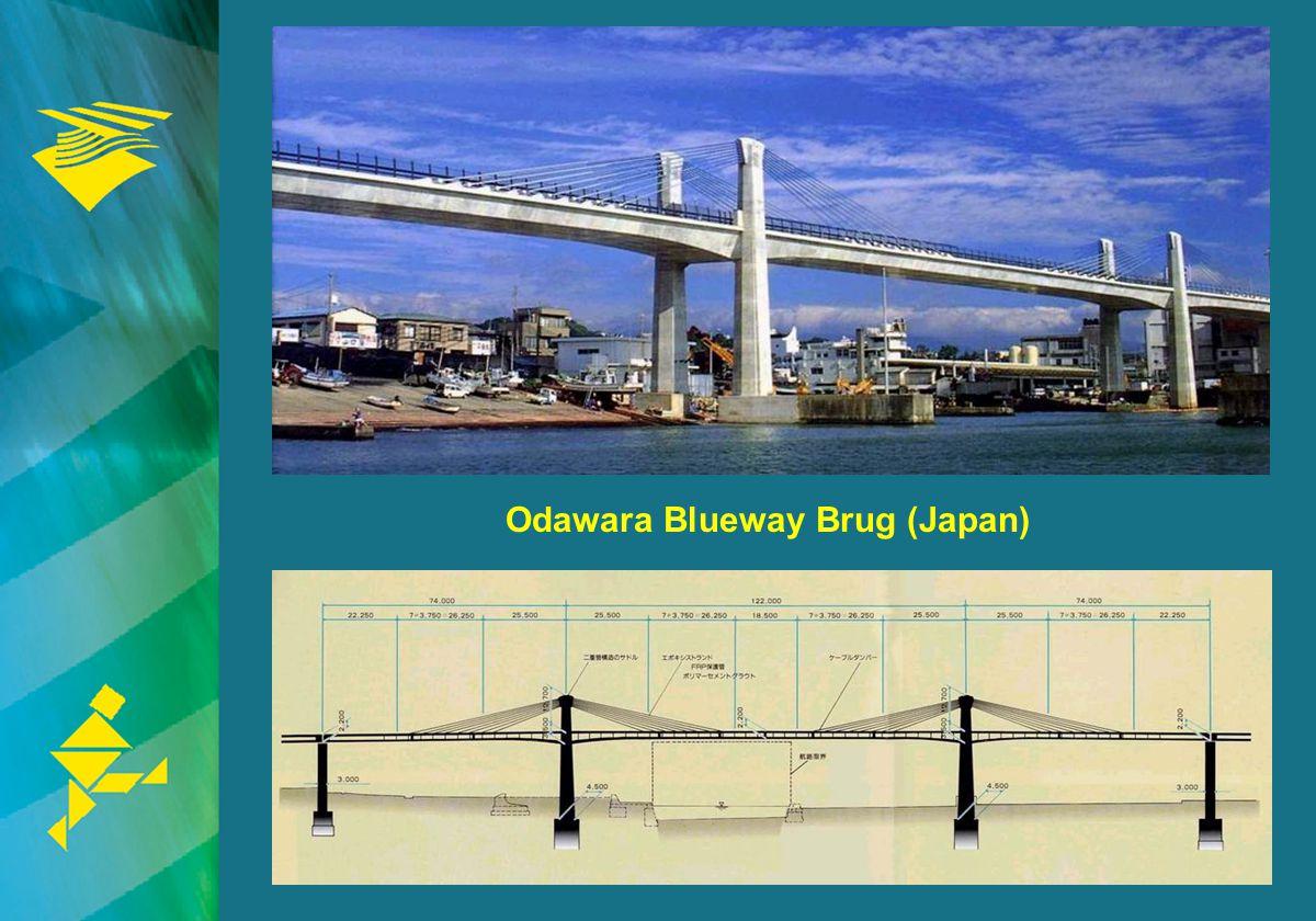 23 Odawara Blueway Brug (Japan)