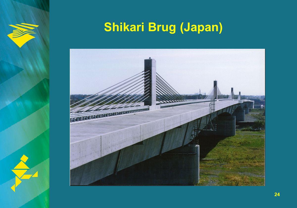 24 Shikari Brug (Japan)