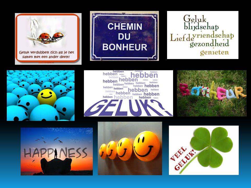 Wat is  Geluk vind ik vaak in:  liefde en een liefdesrelatie  Vriendschap  zinvol werk of studie  inzet voor de wereld/de ander  vrije tijd en vakantie  WORLD HAPPINESS REPORT 2015