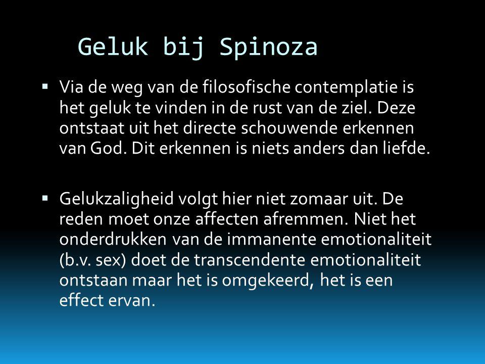 Geluk bij Spinoza  Via de weg van de filosofische contemplatie is het geluk te vinden in de rust van de ziel. Deze ontstaat uit het directe schouwend