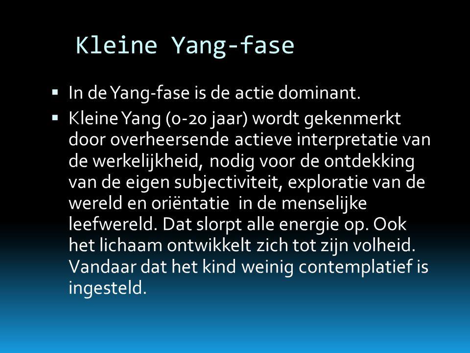Kleine Yang-fase  In de Yang-fase is de actie dominant.  Kleine Yang (0-20 jaar) wordt gekenmerkt door overheersende actieve interpretatie van de we