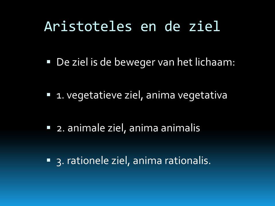 Aristoteles en de ziel  De ziel is de beweger van het lichaam:  1. vegetatieve ziel, anima vegetativa  2. animale ziel, anima animalis  3. ratione