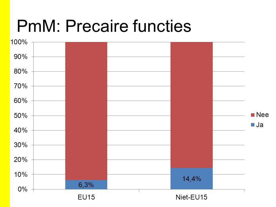 PmM: Precaire functies